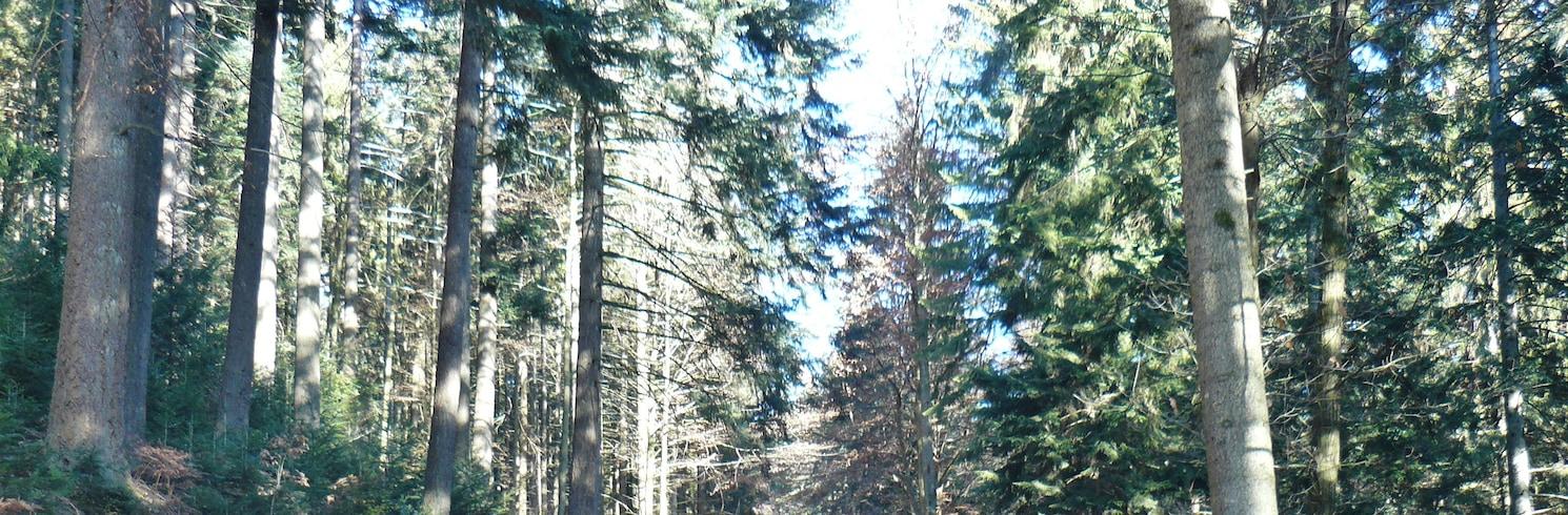 歐伯哈默斯巴赫, 德國