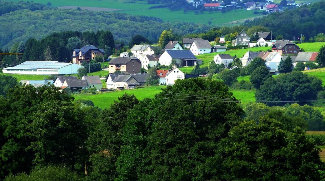 """Foto """"Müllenbach"""" von giggel (CC BY)/zugeschnittenes Original"""
