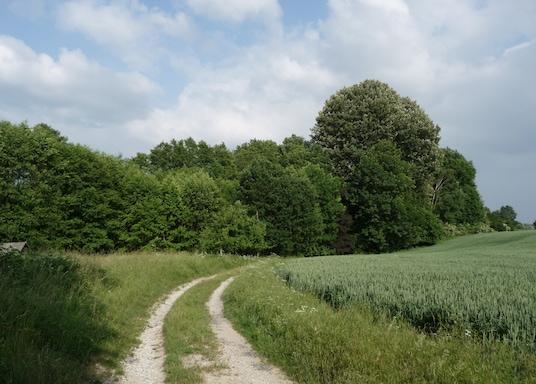 Melle, Γερμανία