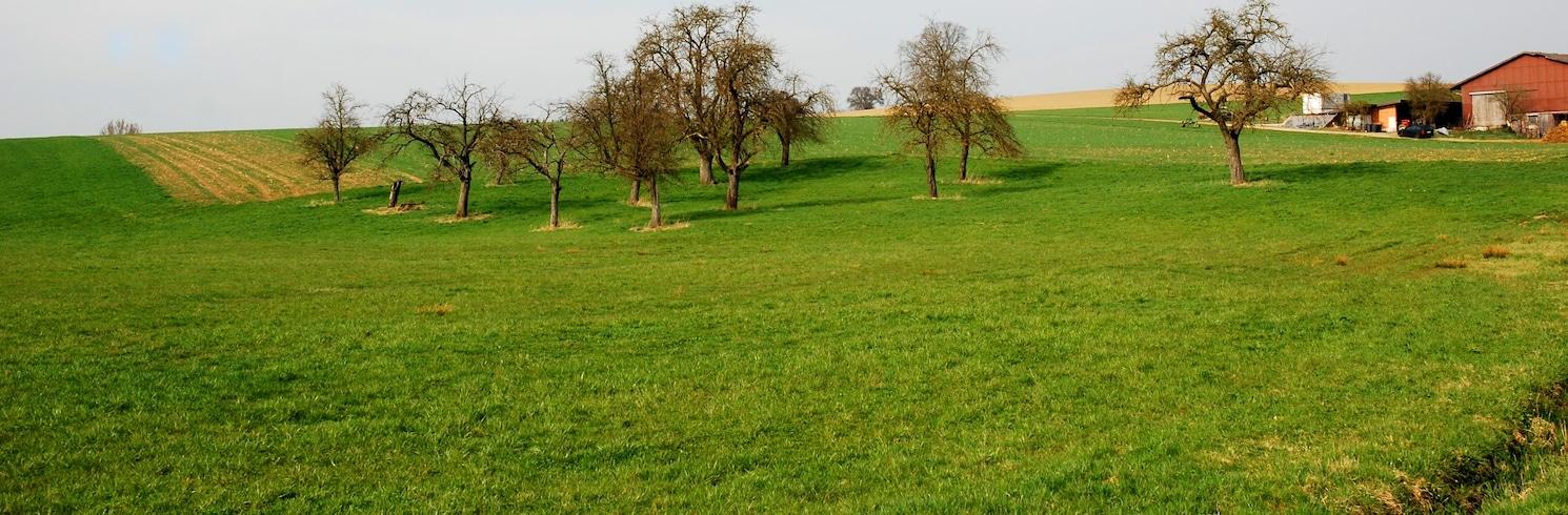 Hofherrnweiler, Saksa