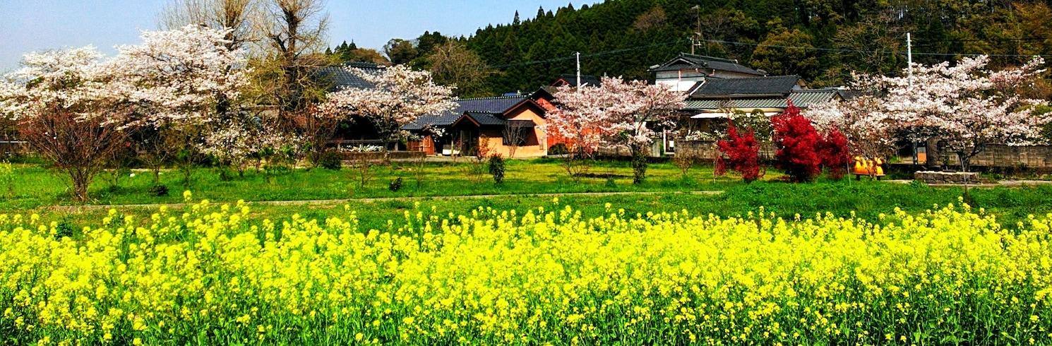 Koshi, Japão