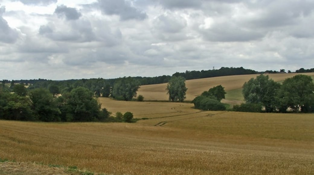 """Photo """"Much Hadham"""" by Christine Matthews (CC BY-SA) / Cropped from original"""