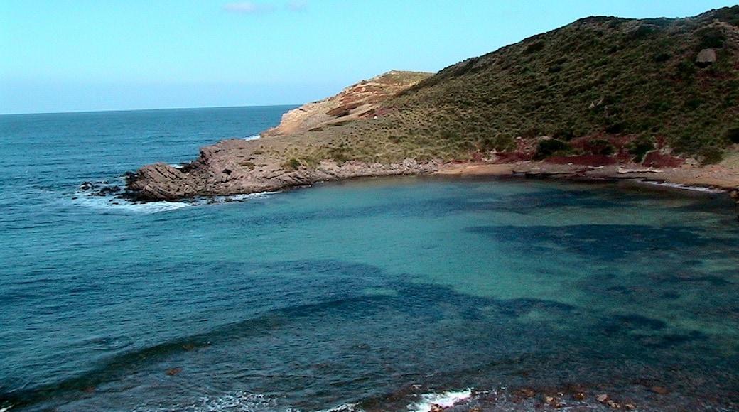 """Foto """"Reserva Marina del Norte de Menorca"""" de Isidre blanc (CC BY-SA) / Recortada de la original"""