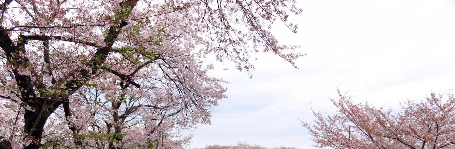 Powiat Hashima, Japonia