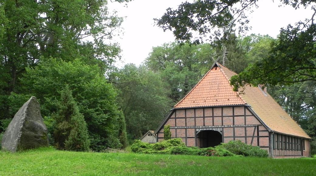 """Foto """"Munster im Heidekreis"""" von Hajotthu (CC BY-SA)/zugeschnittenes Original"""