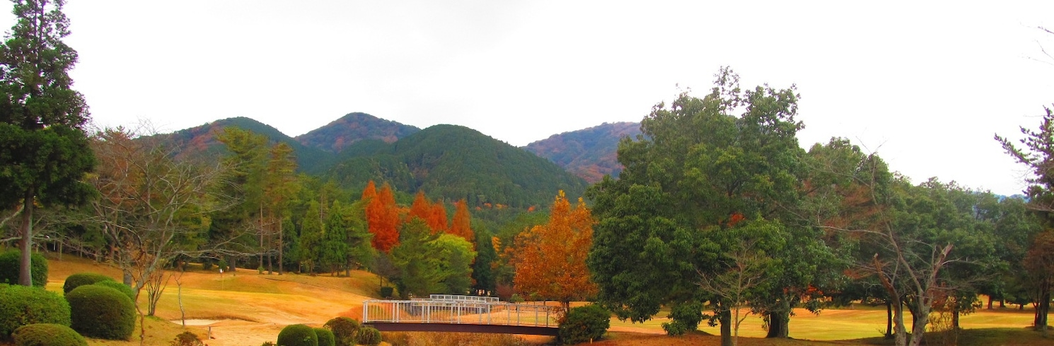 고모노 정, 일본