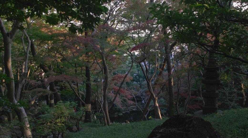 """照片""""国分寺"""" 拍摄者:福原邦展(CC BY)原片经过裁剪"""
