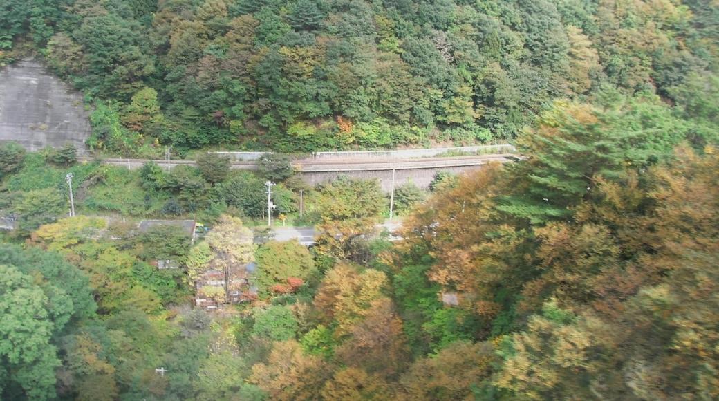 "Foto ""Kamaishi"" de Yamaguchi Yoshiaki (CC BY-SA) / Recortada do original"