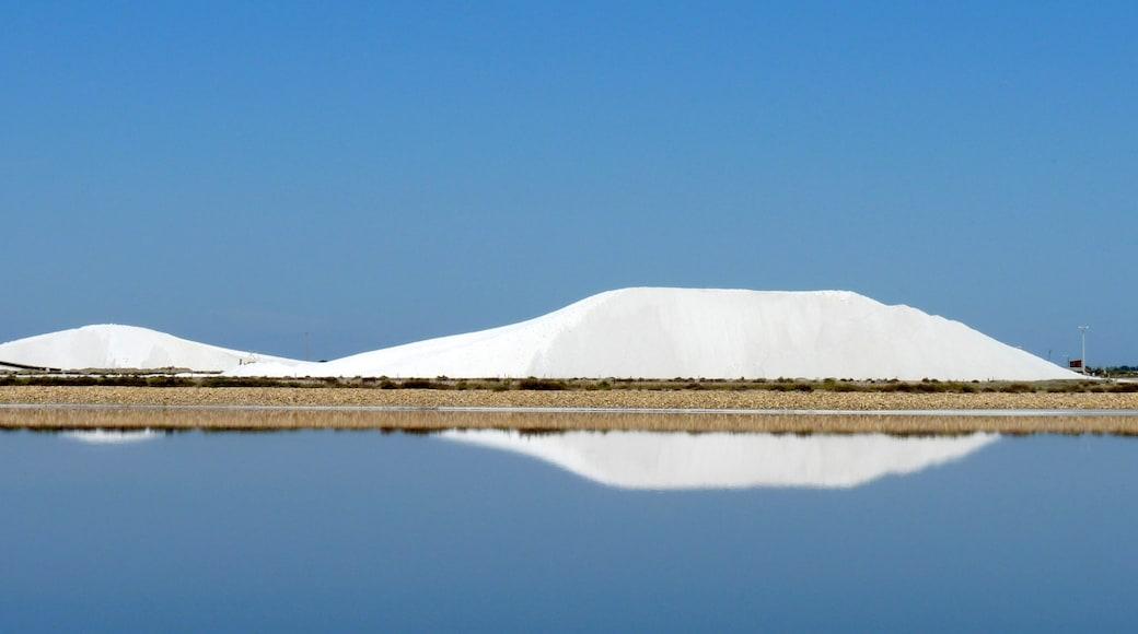 «Aigues-Mortes», photo de lo.tangelini (CC BY-SA) / rognée de l'originale