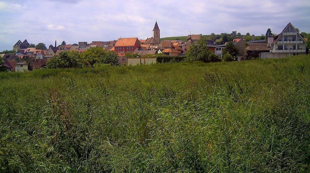 """Foto """"Vogtsburg"""" von pictures Jettcom (CC BY)/zugeschnittenes Original"""