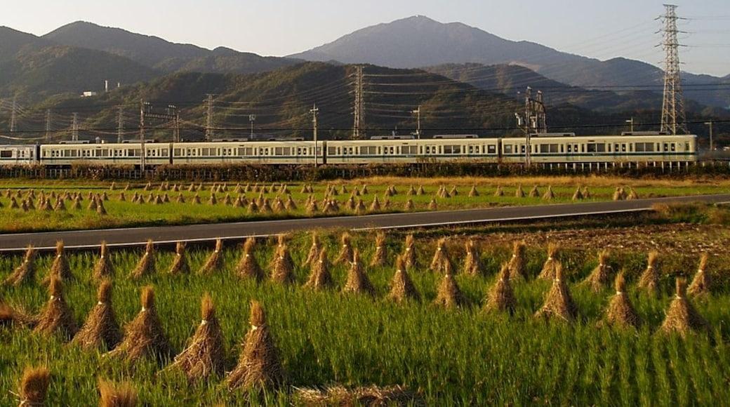 Odakyu Electric Railway, EMU Type 8000 between Isehara Sta. and Tsurumaki-Onsen Sta.
