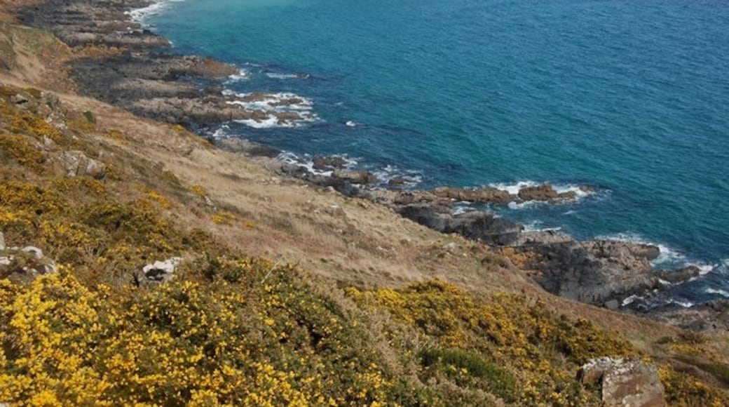 """Photo """"Coverack"""" by Trevor Harris (CC BY-SA) / Cropped from original"""