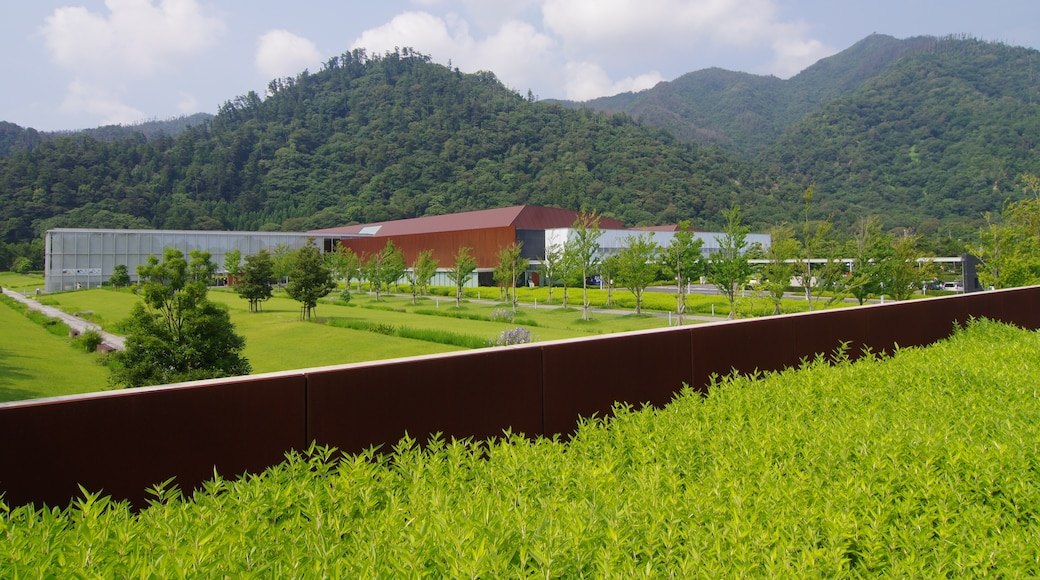 """Photo """"Shimane Museum of Ancient Izumo"""" by Micra (page does not exist) (CC BY-SA) / Cropped from original"""