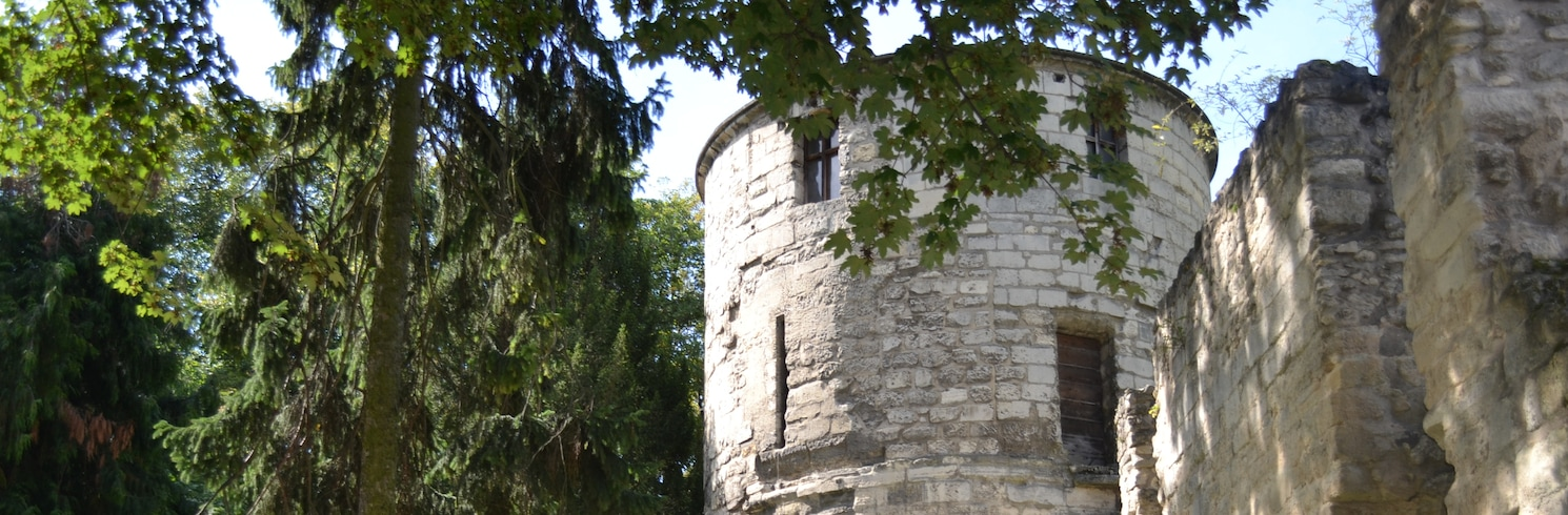 Saint-Maur-des-Fosses, France
