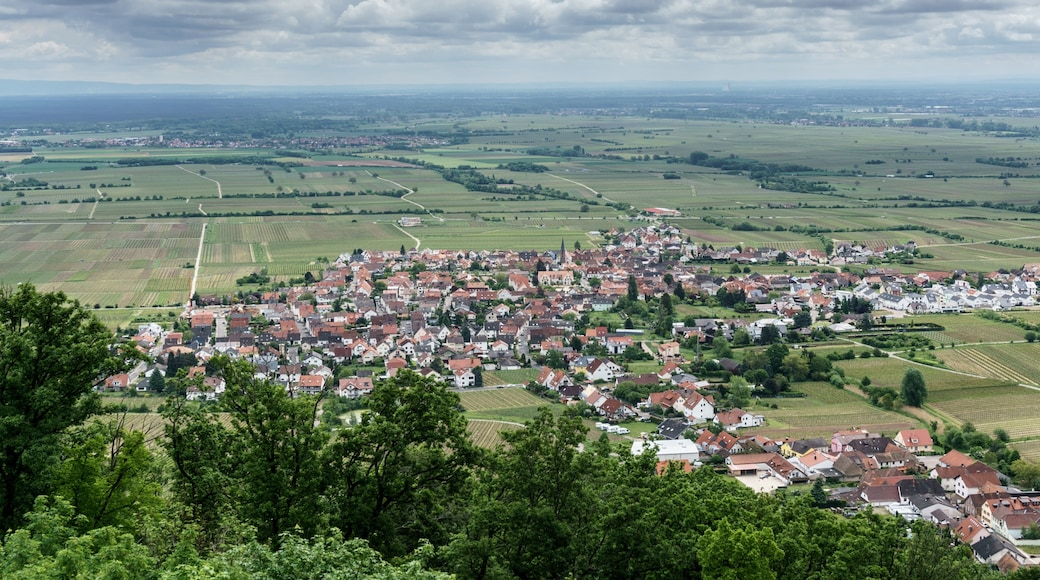 "Photo ""Neustadt an der Weinstrasse"" by Uwe Nassal (CC BY-SA) / Cropped from original"
