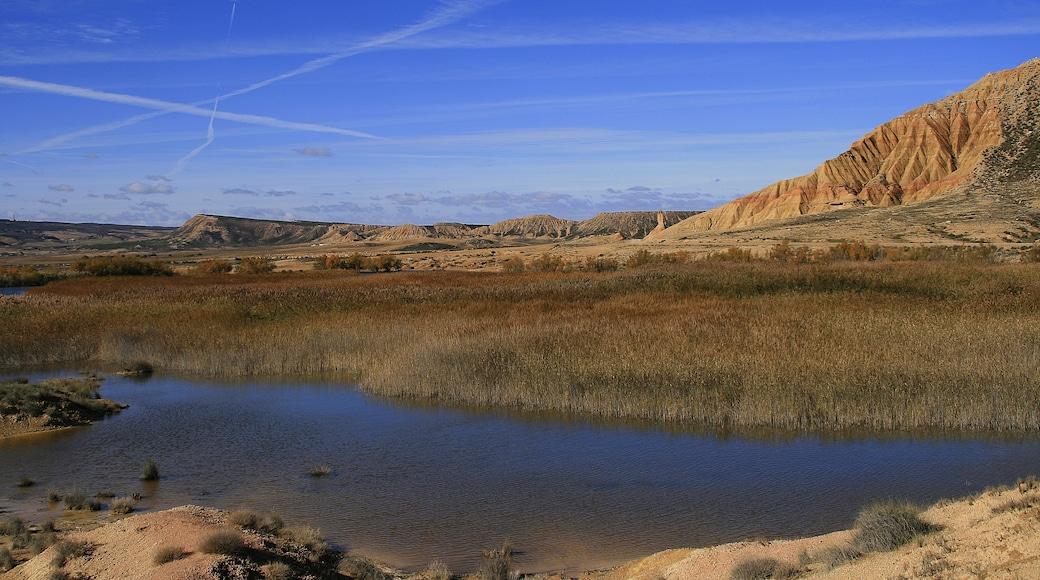 «Parc naturel des Bardenas Reales», photo de Miguel Ángel García. (CC BY) / rognée de l'originale