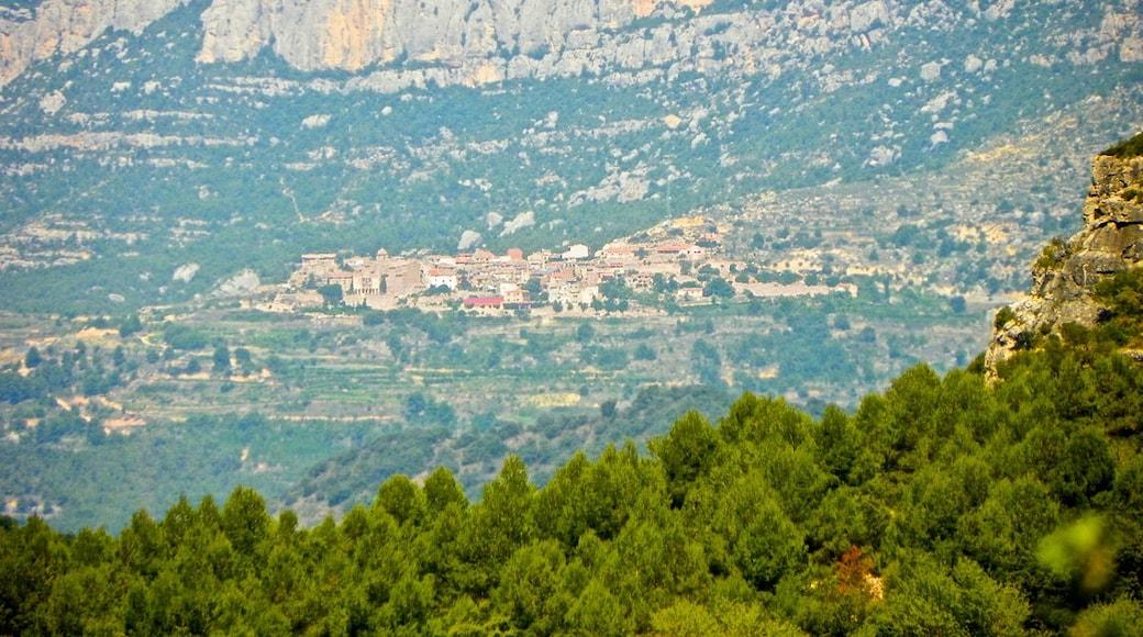 "Foto ""Monestir de Santa Maria de Poblet"" von jordi domènech (CC BY-SA)/zugeschnittenes Original"