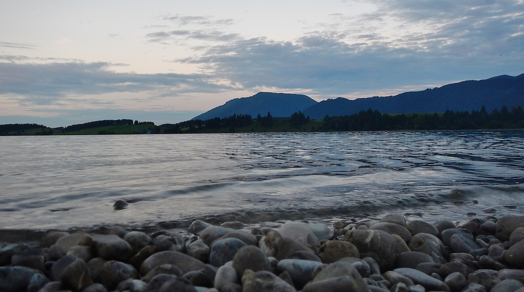 "Foto ""Forggensee"" von qwesy qwesy (CC BY)/zugeschnittenes Original"