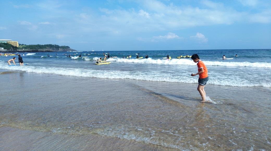 song songroov (CC BY) 的「中文海水浴場」相片 / 裁剪自原有相片