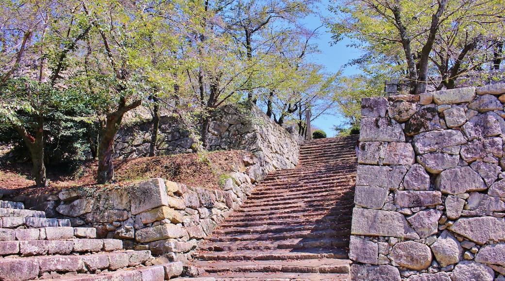 Yoshio Kohara (CC BY) 的「津山」相片 / 裁剪自原有相片