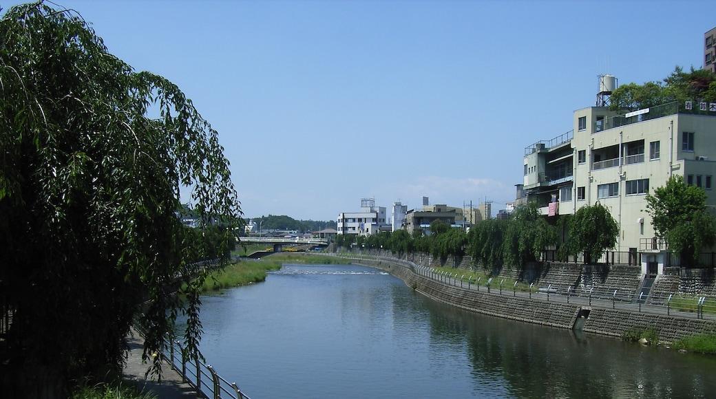 Ta River (Tagawa). Utsunomiya, Tochgi prefecture, Japan. From the Saiwai Bridge.