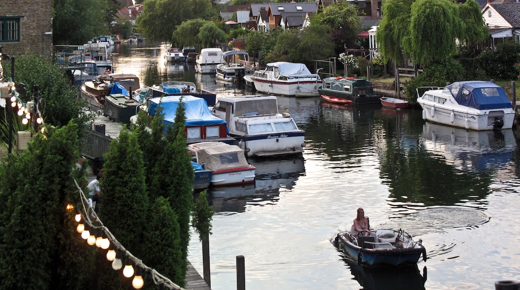 """Photo """"Thames Ditton"""" by brian gillman (CC BY) / Cropped from original"""