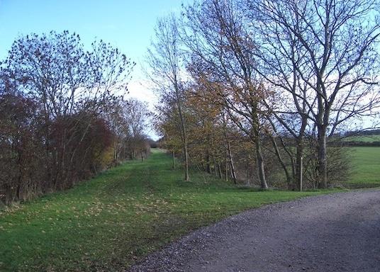 Newton Blossomville, Großbritannien