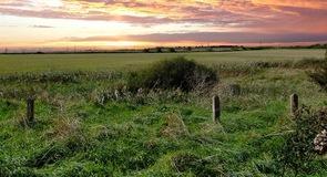 Marsh Farm Country Park