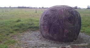 Jeskyns Community Woodland