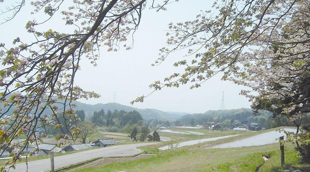 """Foto """"Hakui"""" von kitakame (CC BY)/zugeschnittenes Original"""