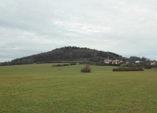 纽马克特上普法尔茨地区, 德国