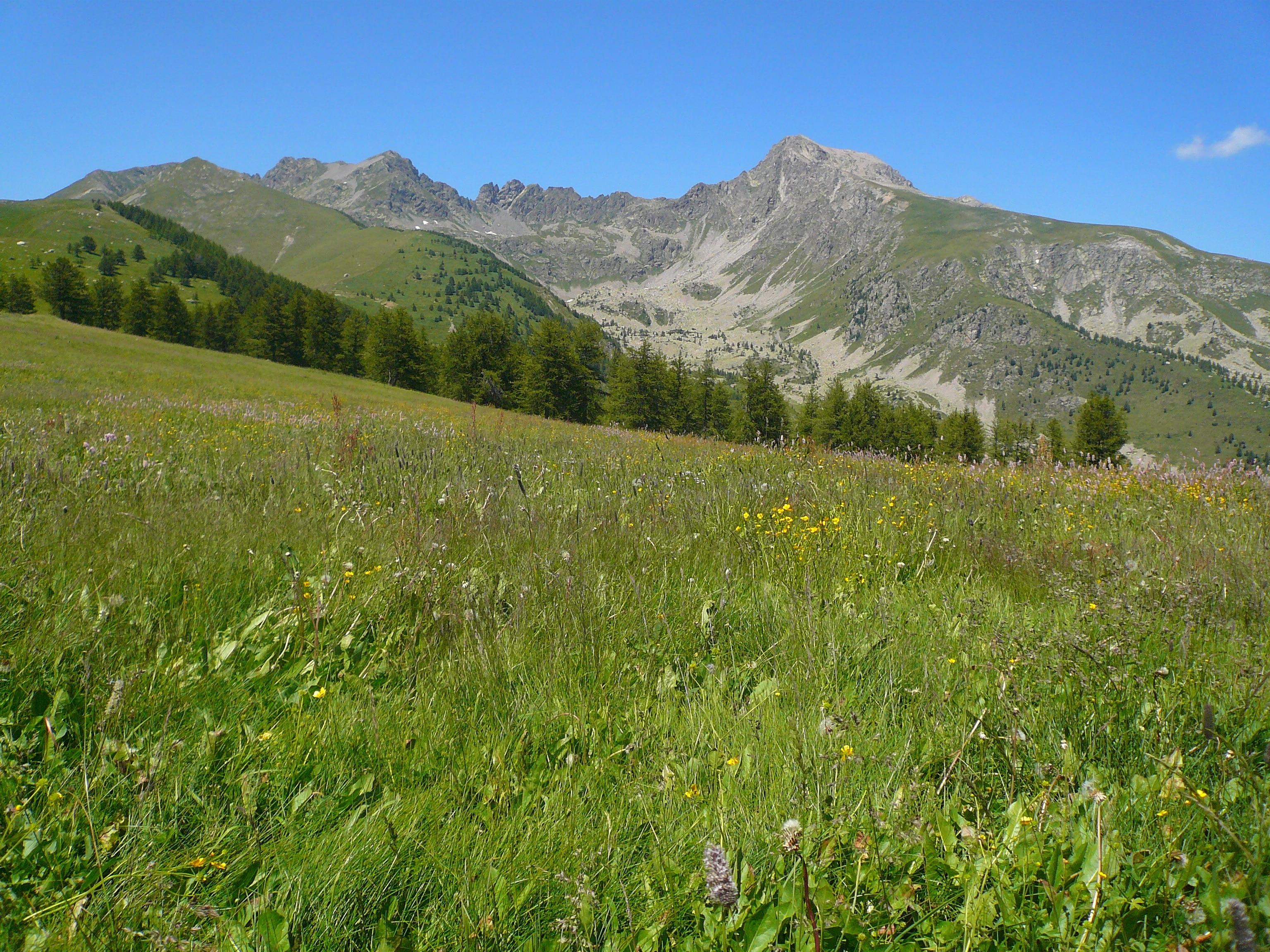 Tende, Alpes-Maritimes, Frankrijk