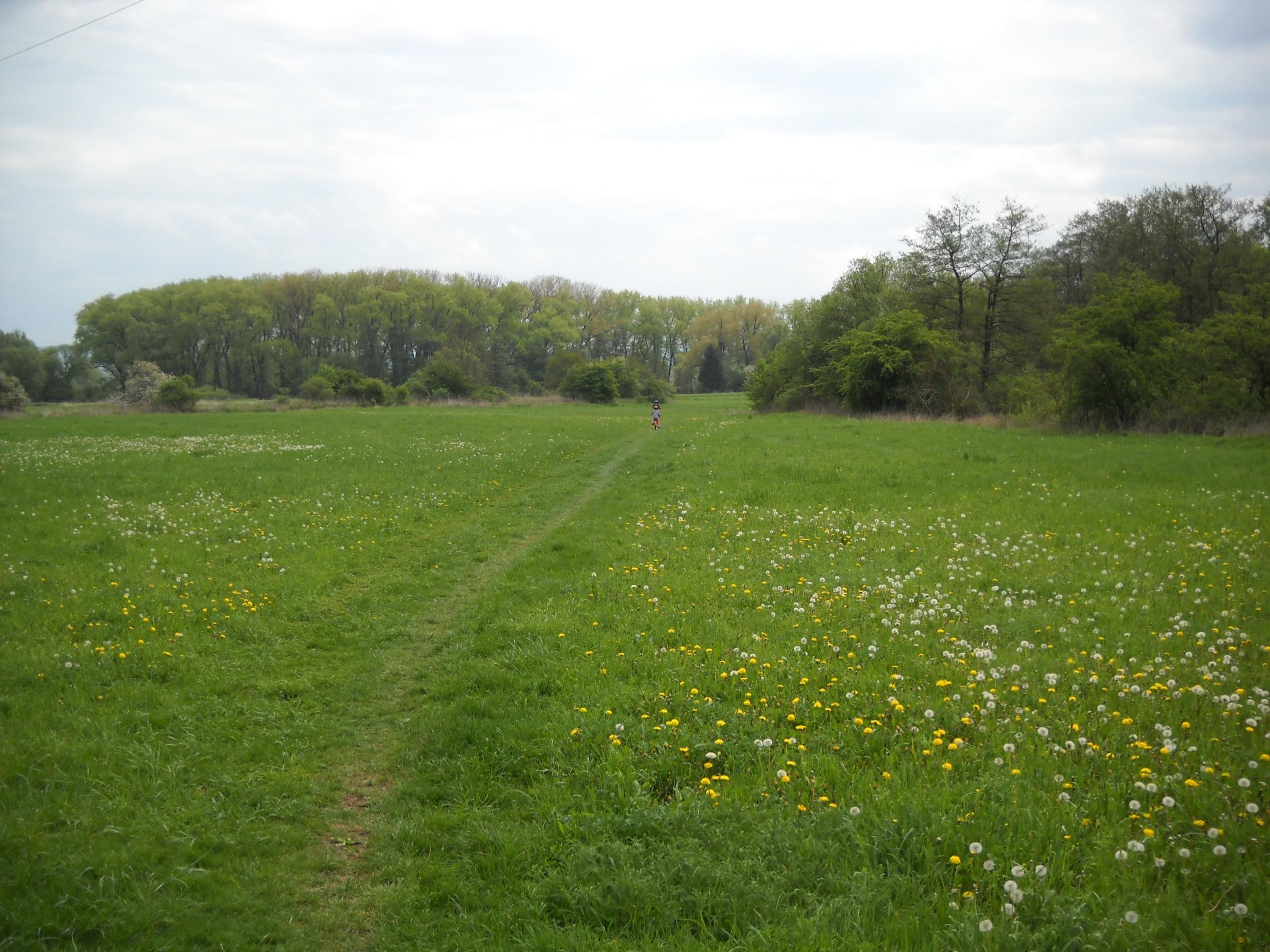 Forchheim, Bayern, Deutschland