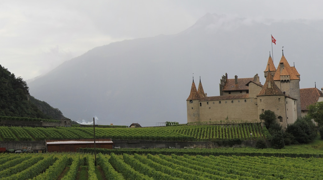 """Photo """"Aigle Castle"""" by Panoramasuisse (page does not exist) (CC BY-SA) / Cropped from original"""