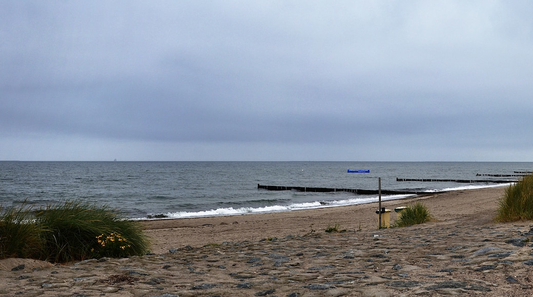 """Photo """"Heiligendamm Beach"""" by Axel Schnell (CC BY-SA) / Cropped from original"""