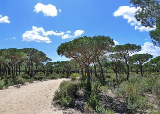 Almonte, Spanien