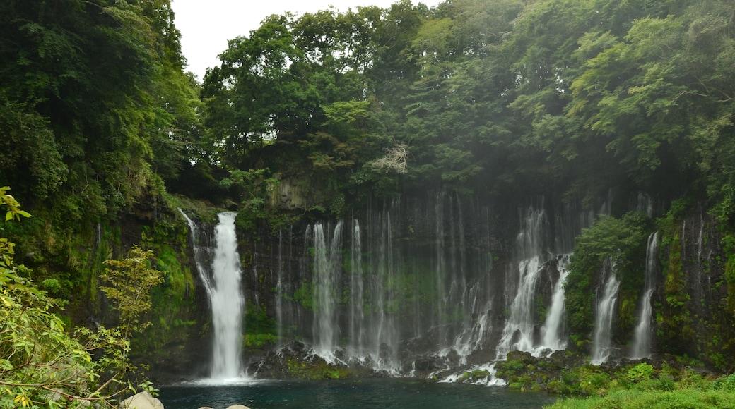 KΛNΛTΛ (CC BY-SA) 的「白絲瀑布」相片 / 裁剪自原有相片