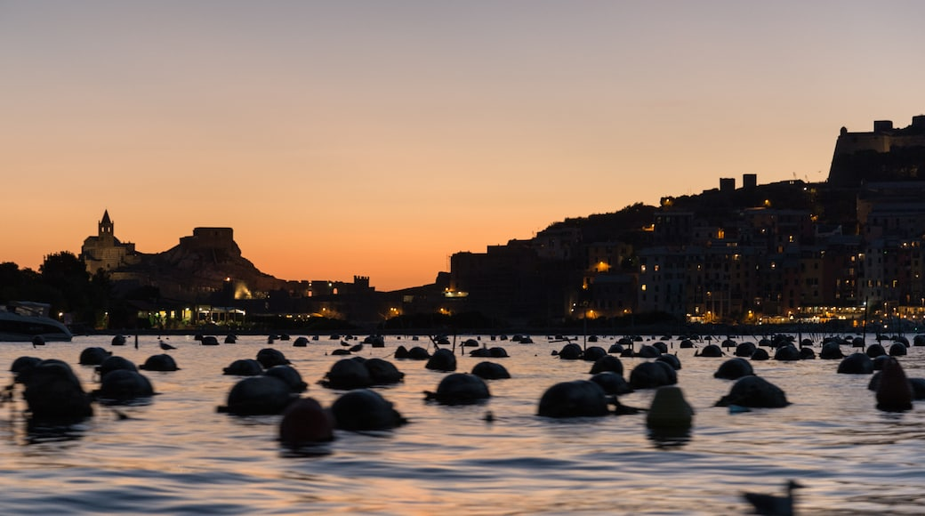 "Foto ""Insel Palmaria"" von Giorgio Galeotti (CC BY)/zugeschnittenes Original"