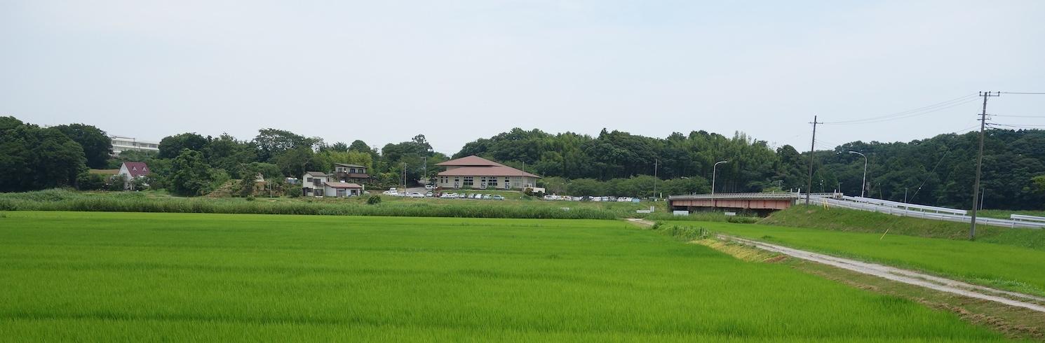 Ushiku, Japan
