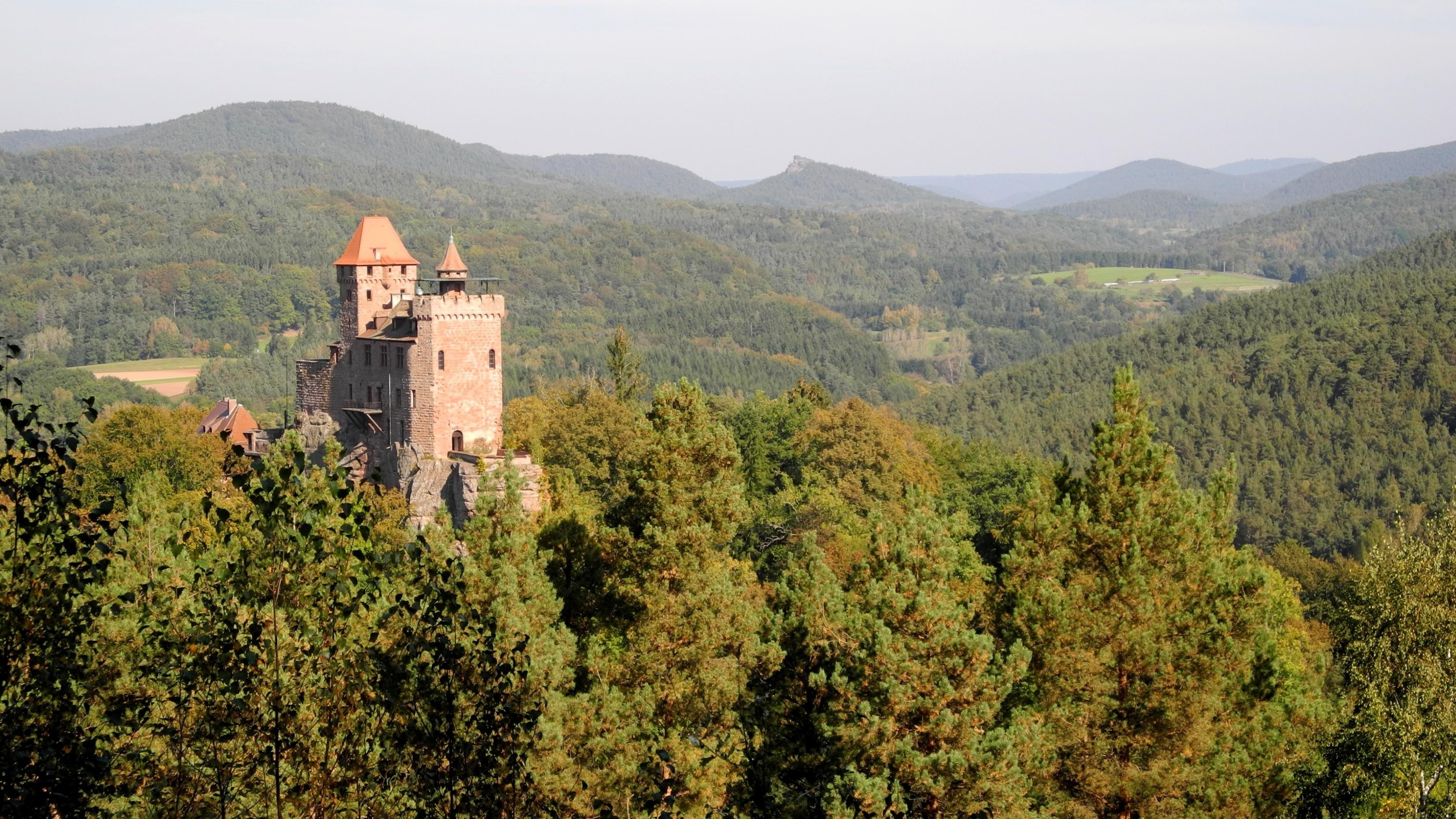 Erlenbach bei Dahn, Rheinland-Pfalz, Deutschland