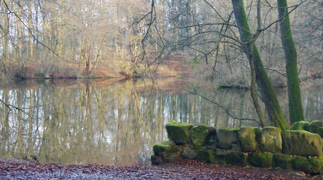 "Foto ""Alte Drusel"" von qwesy qwesy (CC BY)/zugeschnittenes Original"