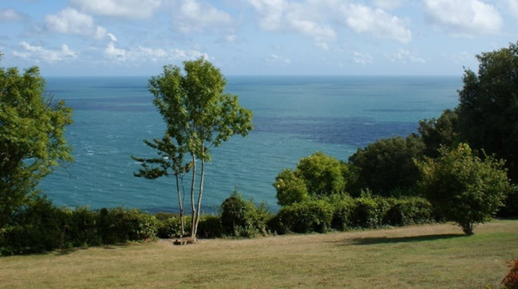 """Photo """"Bonchurch"""" by Peter Trimming (CC BY-SA) / Cropped from original"""