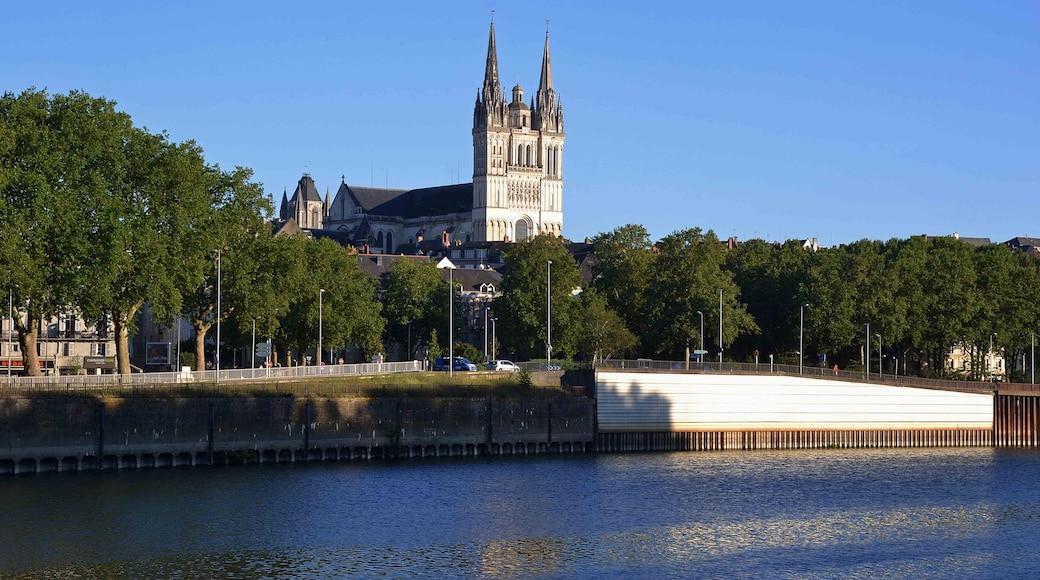 «Cathédrale Saint-Maurice d'Angers», photo de Paolo Carnassale (CC BY-SA) / rognée de l'originale