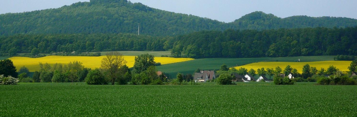 阿羅爾岑, 德國
