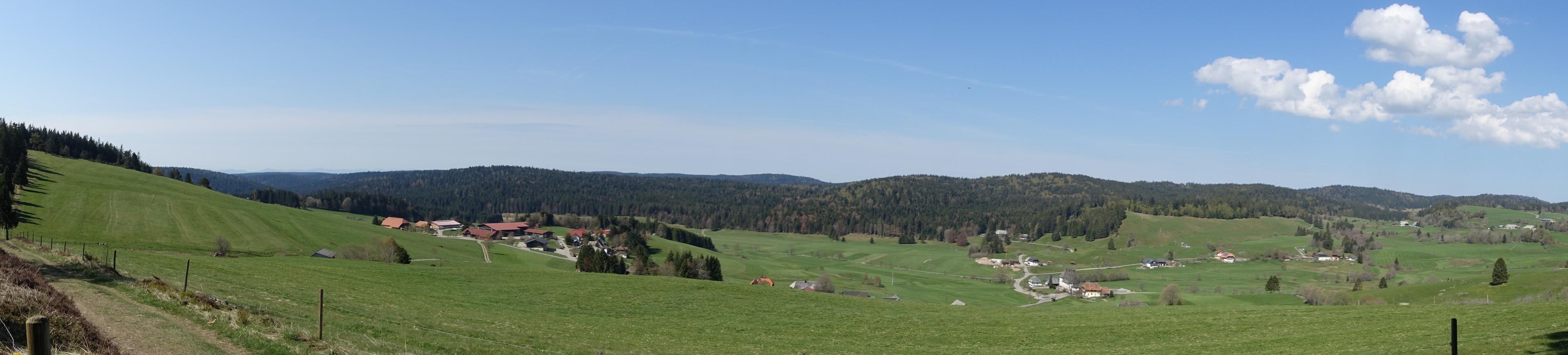 Dachsberg (Südschwarzwald), Baden-Württemberg, Deutschland