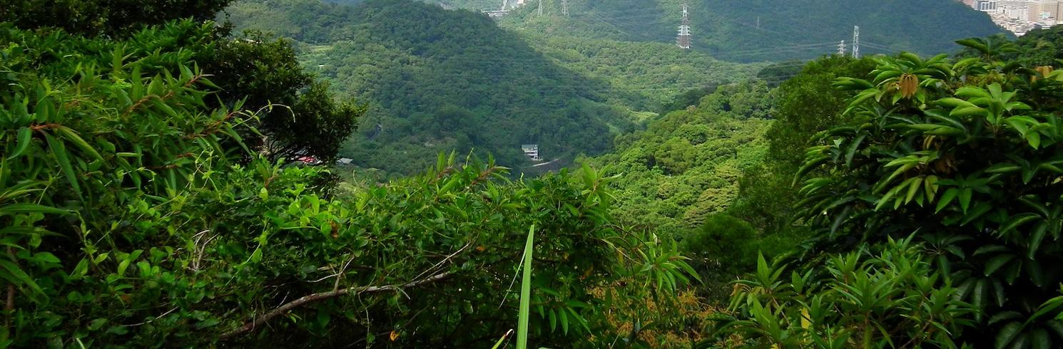 新北市, 台灣
