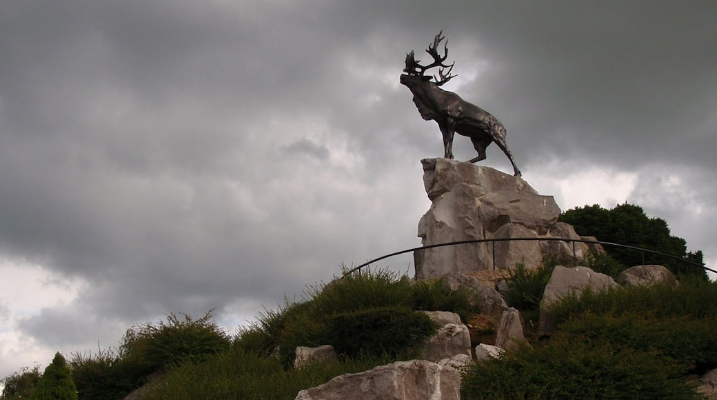 «Mémorial terre-neuvien de Beaumont-Hamel», photo de Adrian Farwell (CC BY) / rognée de l'originale