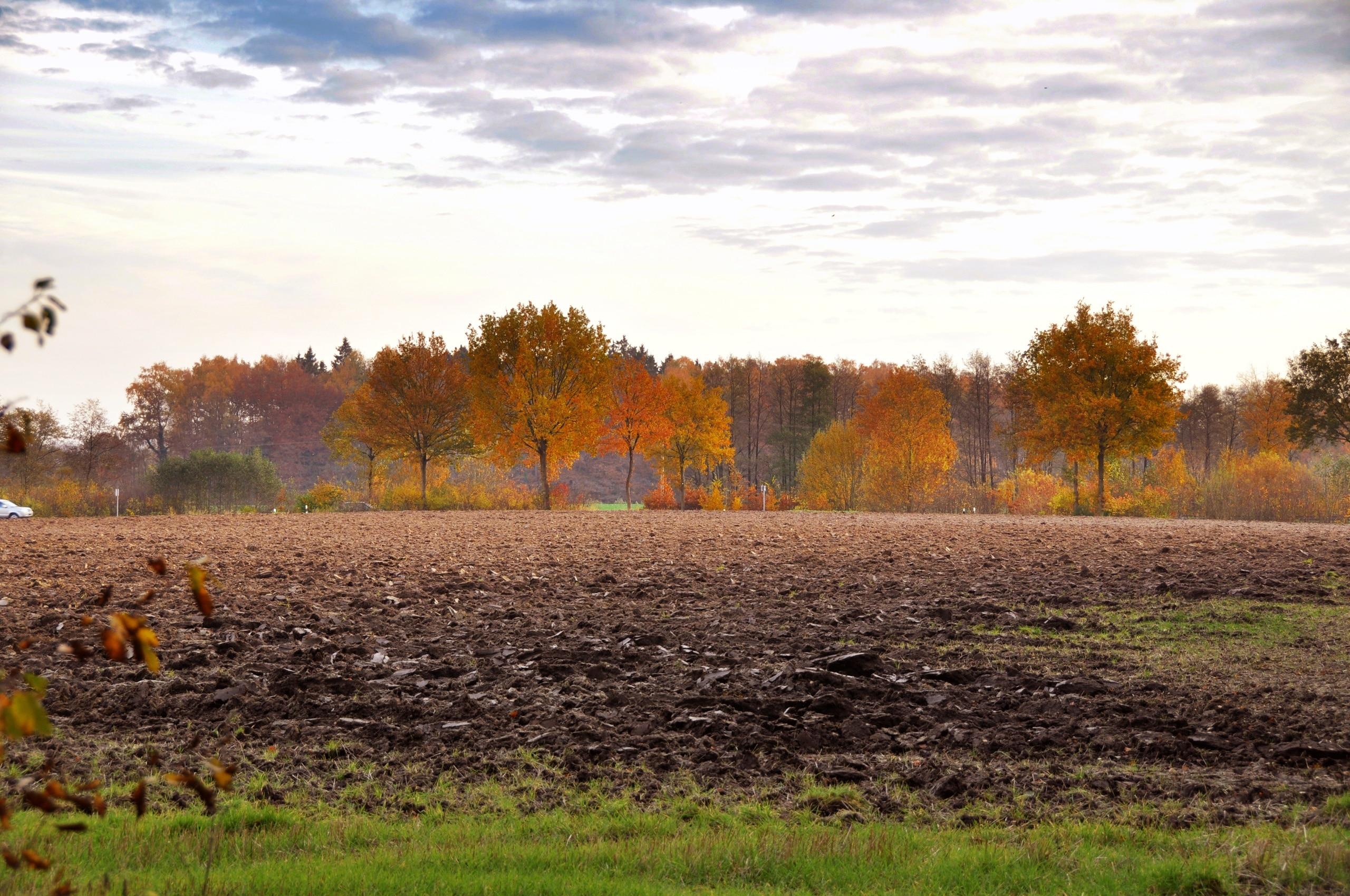 Bliestorf, Schleswig-Holstein, Germany