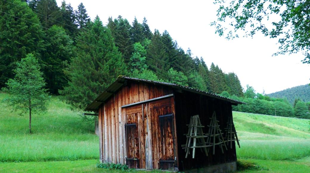 """Foto """"Alpirsbach"""" von Dg-505 (CC BY)/zugeschnittenes Original"""
