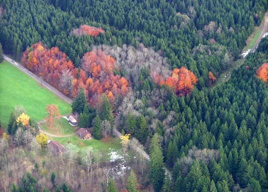 Kempter Wald, Germany